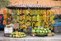 Amazonic traditionella frukter Royaltyfri Bild