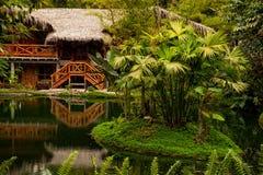 Amazonisches Häuschen lizenzfreie stockbilder