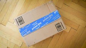Amazonka Pierwszorzędnego dnia kartonowy drobnicowy kartonowy obracanie zbiory wideo