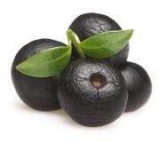 Amazonki acai owoc z liściem odizolowywającym zdjęcie royalty free