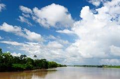 Amazonki rzeki krajobraz w Brazylia Zdjęcia Royalty Free