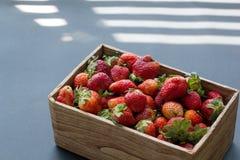 Ambachtdoos van verse organische aardbeien in het zon lichte zijaanzicht stock afbeeldingen