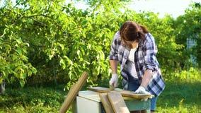 Ambachtenvrouw die oude houten plank met metaalborstel verwerken in zonnige tuin stock video