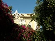 Ambassade Royalty-vrije Stock Foto's