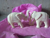 Ambawadi di Rajasthani dell'insieme di scacchi di re Immagine Stock