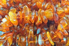 Amber — petrified fossil resin, the hardened resin of ancient coniferous trees. royalty free stock photos