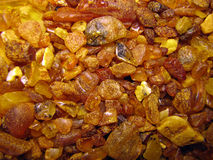 Amber. The gold amber from Lithuania cost Royalty Free Stock Photo