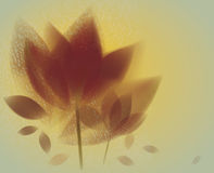 Amber abstract flowers Royalty Free Stock Photos