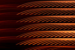 Amber abstract light wave. Royalty Free Stock Photography
