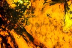 Amber background Royalty Free Stock Photos
