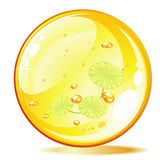 Amber ball and plant Stock Image