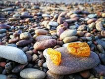 Amber on the Baltic beach. Photo taken in 2017 winter royalty free stock photo