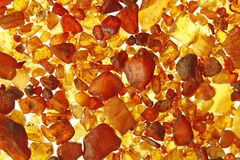 Amber from the Baltic Sea. Amber stones from the beach of the Baltic Sea, Germany Royalty Free Stock Photo
