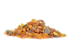 Amber from baltic sea Royalty Free Stock Photo