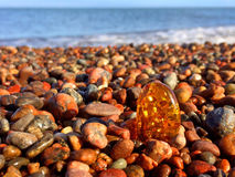 Amber on a beach of the Baltic Royalty Free Stock Images