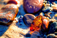 Amber on a beach of the Baltic Sea Royalty Free Stock Photos