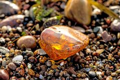 Amber on a beach of the Baltic Sea Stock Images