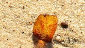 Amber on a beach of the Baltic Sea stock footage
