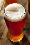 Amber Beer escura de refrescamento fresca imagem de stock