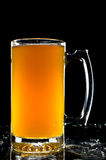 Amber Beer Glass Stock Photography