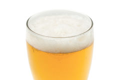 Amber beer in pint glass Royalty Free Stock Image