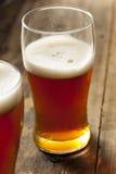 Amber Beer scura di rinfresco fresca fotografia stock libera da diritti
