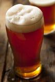 Amber Beer scura di rinfresco fresca fotografie stock