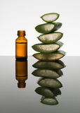 Amber bottle with aloe vera leaf cut into pieces with dropper Stock Images