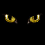 Amber cat eyes in darkness. Style low-poly Royalty Free Stock Image