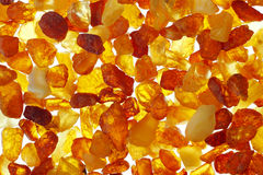 Amber. Close up shoot of baltic amber stones. Backlight illumination Royalty Free Stock Photography