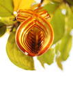 Amber color. Focus at amber color hair clip on natural background royalty free stock image