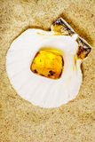 Amber with embedded insect Stock Image