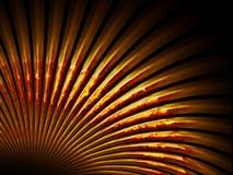 Amber fan shaped shell. On black background Stock Photo