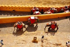 Amber Fort à Jaipur, Inde images libres de droits