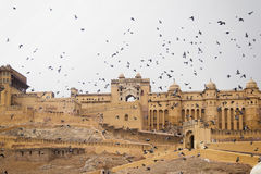 Amber Fort Royalty Free Stock Photography