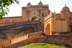 Amber Fort with the elephant in Jaipur Stock Photography