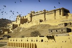 Amber Fort Glowing im Sun Stockfotografie