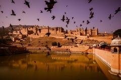 Amber fort of Jaipur