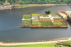 Amber Fort,Jaipur, Rajasthan, India. Royalty Free Stock Photo