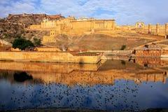 Amber Fort in Maota-Meer dichtbij Jaipur, Rajasthan, India wordt weerspiegeld dat royalty-vrije stock foto