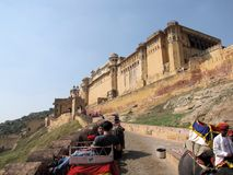 Amber Fort near Jaipur, India. Elephants ferry visitors to the Amber Fort north of Jaipur, Rajasthan, India Royalty Free Stock Image