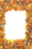 Amber frame Stock Photography