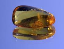 Amber gele doorzichtig Stock Afbeelding