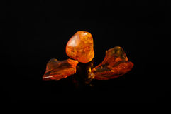 Amber gemstone Stock Photos