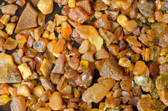 Amber Stock Photography