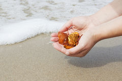 Amber in the hand with a bright reflection on the palm against the background of the sea. Bright glow of the sun stone in female hand. Mineral from resin Stock Photos