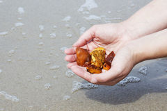 Amber in the hand with a bright reflection on the palm against the background of the sea. Bright glow of the sun stone in female hand. Mineral from resin Royalty Free Stock Images