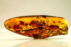 Amber with inclusions. In a closeup stock images