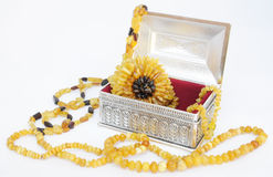 Amber jewelry and siver box Stock Image