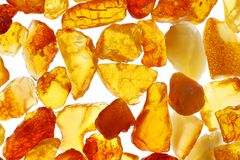 Amber. Macro shoot of baltic amber stones. Backlight illumination Stock Photos